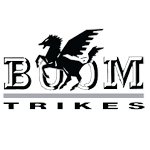Motorcycle cover for Boom Trikes