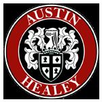 Bâche / Housse protection voiture Austin Healey